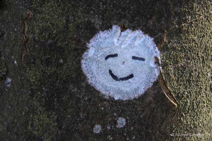 Der WW-Seenplatte Smiley