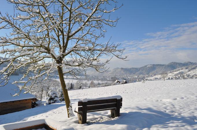 Ausblick im Schnee