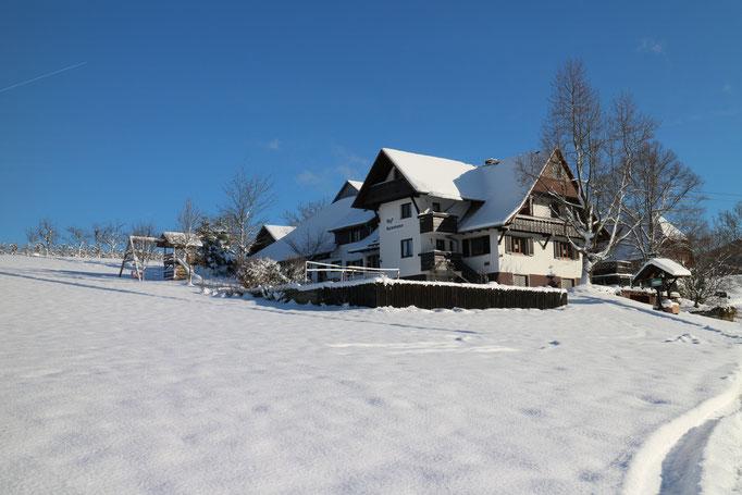 Hof Isenmann im Schnee