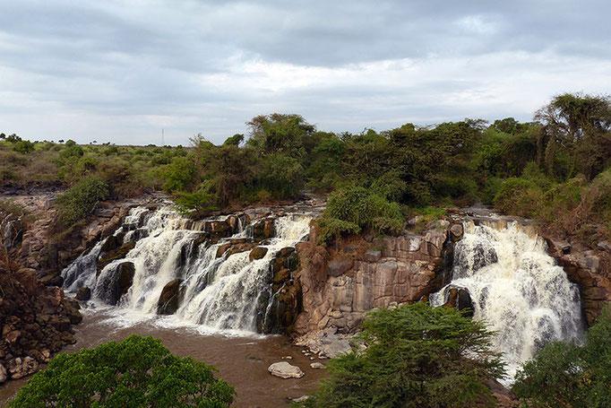 Awash Falls