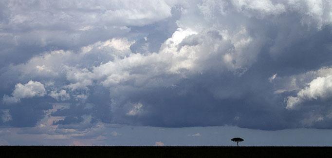 Maasai Mara: L'orage approche