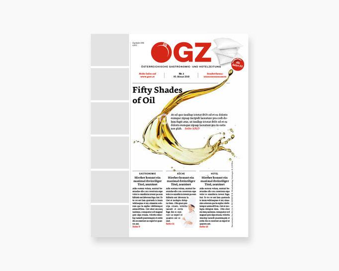 Wirtschaftsverlag Relaunch ÖGZ