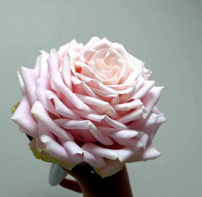 Bouquet de mariée (Roses reconstituée)