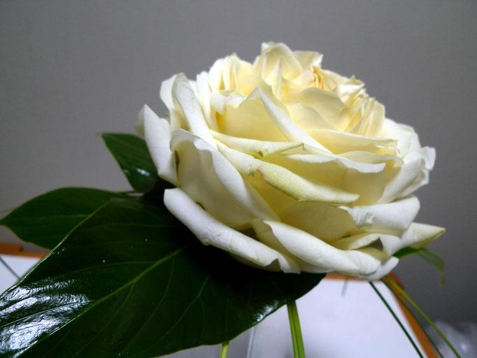 Bouquet de mariée (Rose reconstituée; il a fallu 5 roses pour reconstituer cette rose)