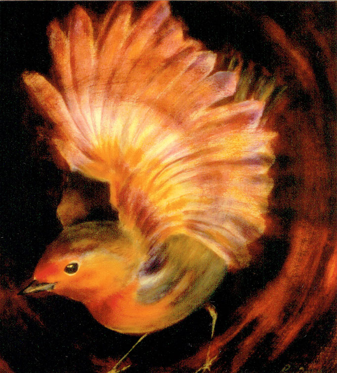 Rotkehlchen, 37 x 41 cm, Acryl/Malkarton