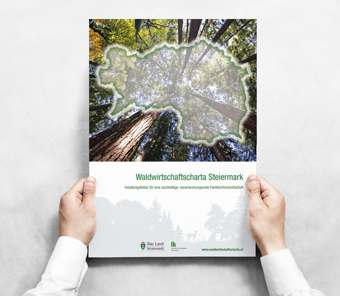 LAND STEIERMARK: Waldwirtschaftscharta Steiermark ©by dunstdesign.at