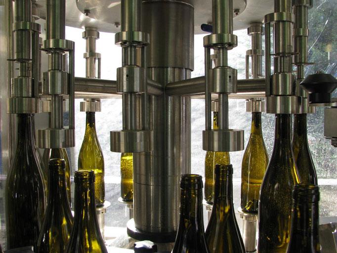 La lumière du matin à travers les bouteilles donne un air d'effervescence au vin