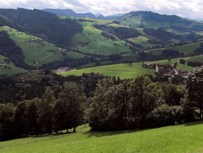 Blick von St. Georgen in der Klaus auf Hirschberg und Spindeleben (1066 m)