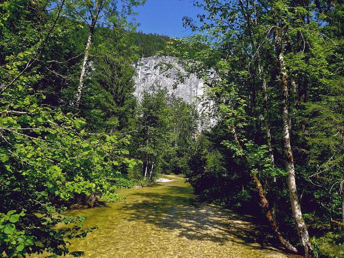 Toplitzbach und Gösslerwand zwischen Gössl und Kammersee