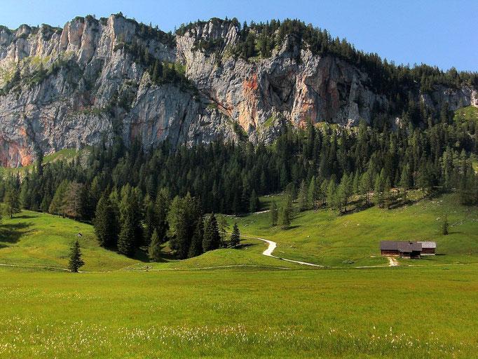 Blick über das Moorwiesengebiet zur Filzmoosalm und Rotwand