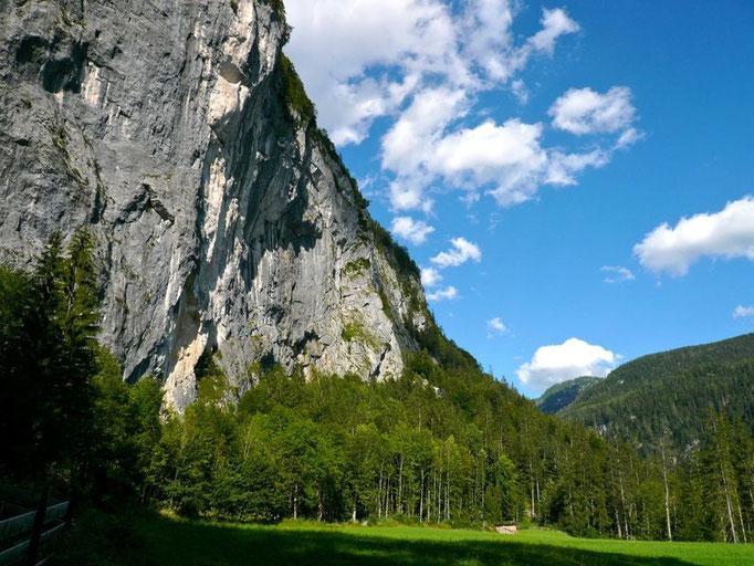 Die Gößler Wand vom Weg Gößl - Kammersee