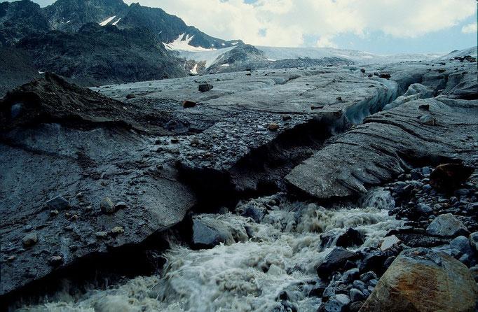Ein Bach tritt auf der westlichen Zungenseite aus dem Eis. Das Eis der Zunge war nur ein paar Meter hoch.