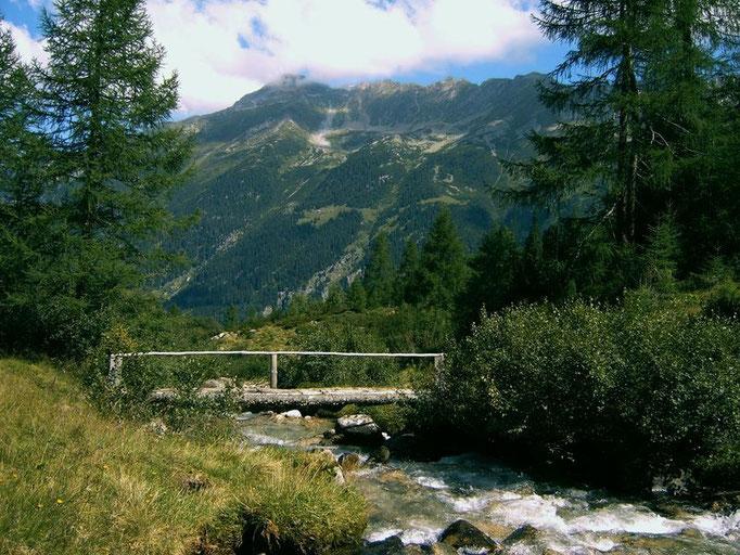 Der Steg über den Bodenbach führt in das Hochtal des Bodengrunds
