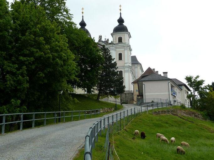 Wallfahrtskirche Basilika Sonntagberg