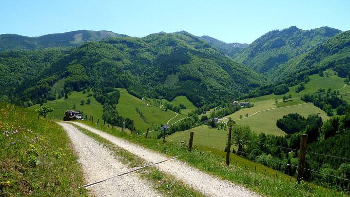 Blick über den Lumplgraben zum Waseriedl, Zickerstein und Gamsstein. Der Almkogel ist dahinter fast verborgen.