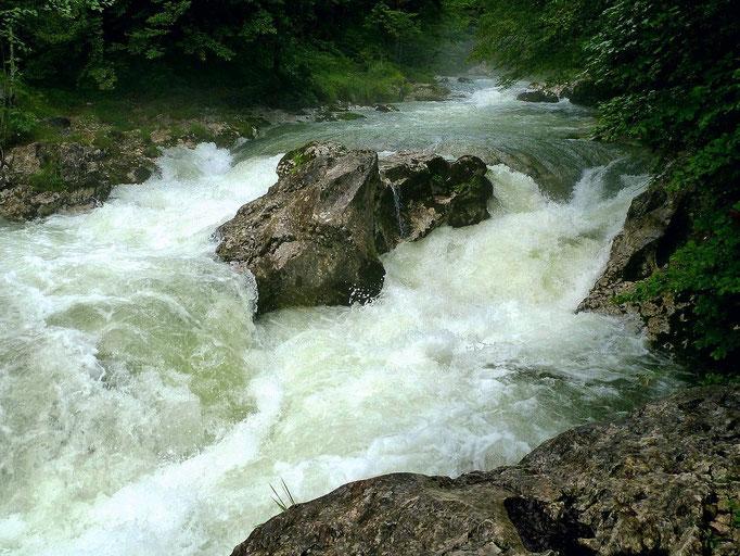 Die viel Wasser führende Mostnica vom rechten Wanderweg Fluss aufwärts.