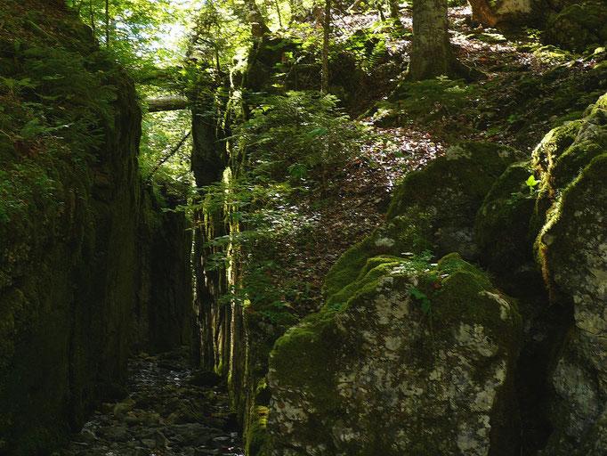 Felsdurchstich zwischen Kammersee und Toplitzsee, um Hochwasser aus dem hinteren Tal abzuleiten und zu vermeiden