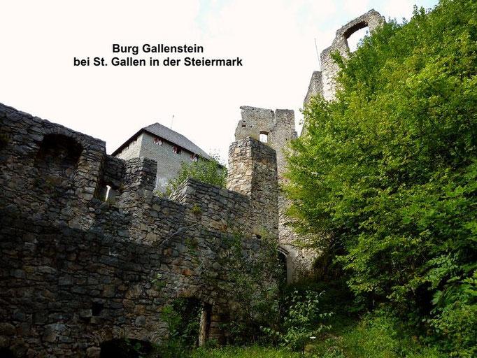 Burgruine Gallenstein vom Weg vor dem Tor