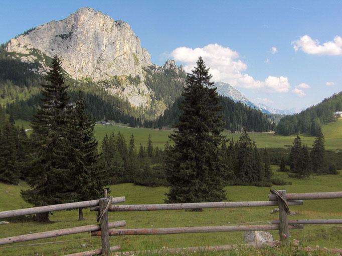 Das weitläufige Weide- und Moorwiesengebiet mit Stubwieswipfel von der Ausscihtswarte am Themenweg