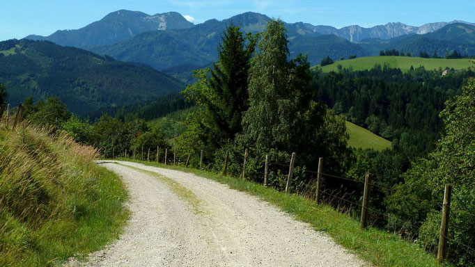 Sicht vom Güterweg zur Gschwendtalm auf den Nationalpark Kalkalpen mit Gr. Größtenberg und Hoher Nock