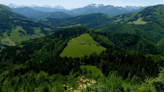 Haller Mauern und Nationalpark Kalkalpen mit dem Gr. Größtenberg und dem Gebirgszug bei der Blumenauer Alm vom Anstiegsweg auf den Hieselberg