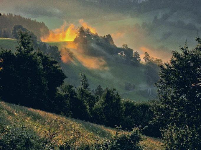 Tanzende Nebel im ersten Sonnenlicht im Neustiftgraben