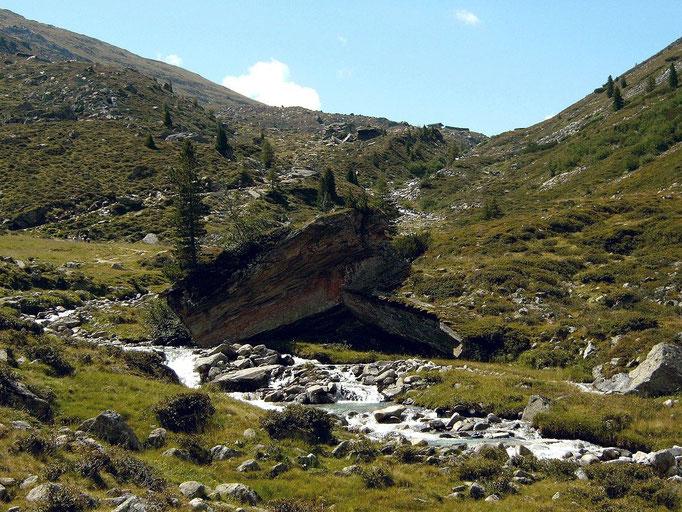 Bewachsene große Felsblöcke