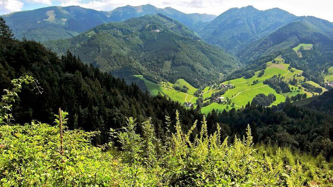 Blick über Lumplgraben zum Gamsstein