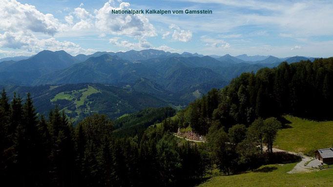 Jagdhütte am Gamsstein