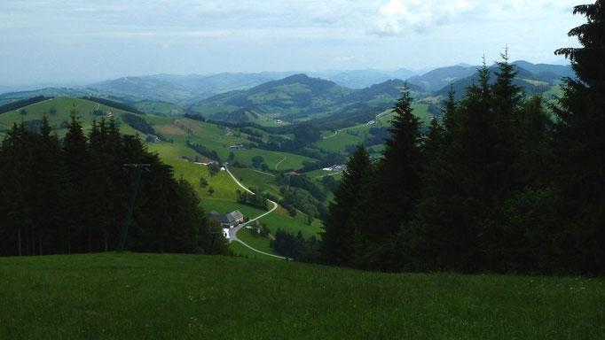Blick vom Anstiegspfad durch den Wiesenhang nach Osten ins Alpenvorland und zur Basilika Sonntagberg am Kamm links oben