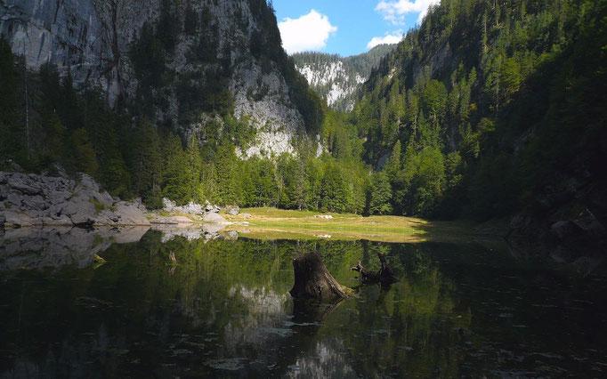 Kammersee Richtung Traun-Ursprung