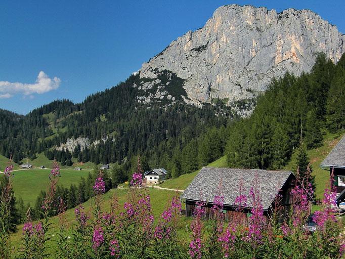 Stubwieswipfel und Naturfreundehaus von der Standseilbahn-Bergstation