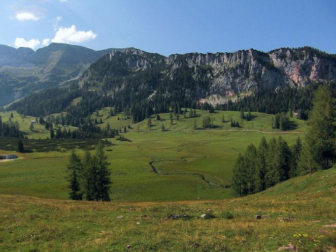 Blick über das Hochmoorgebiet zur Rotwand