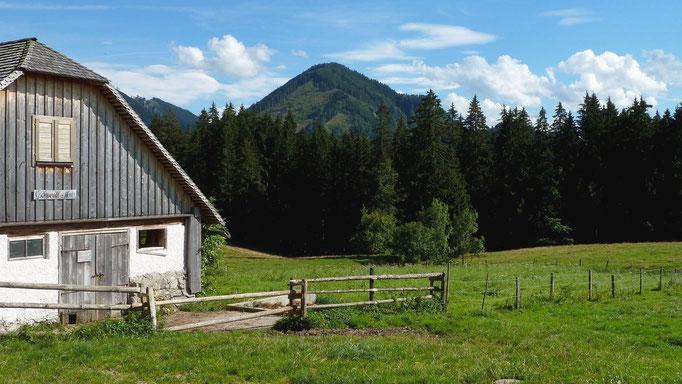 Gschwendtalm mit Höhenberg