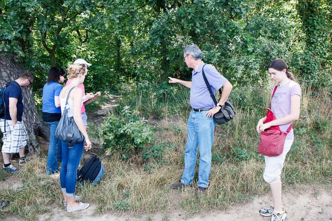 Exkursionsteilnehmer bei Karthäuser-Nelke ( Foto: B. Budig)