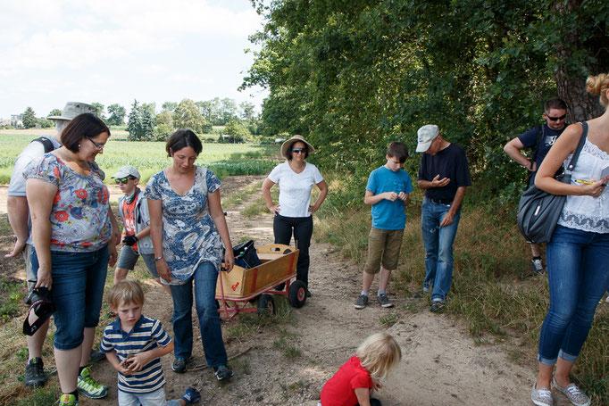 Exkursionsteilnehmer bei NSG Dreieichenbuckel ( Foto: B. Budig)