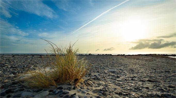 Helgoland / Düne
