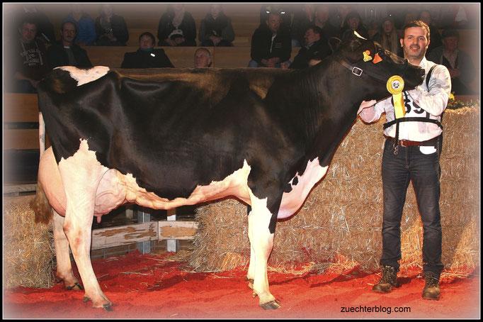 VTH Ramos Lupe von Johannes Mundigl belegte im Finale der älteren Kühe den 2. Rang.