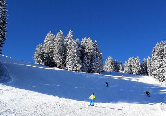 Skifahren im Top-Zwei-Skigebiet Adelboden-Lenk, dänk. Schweiz