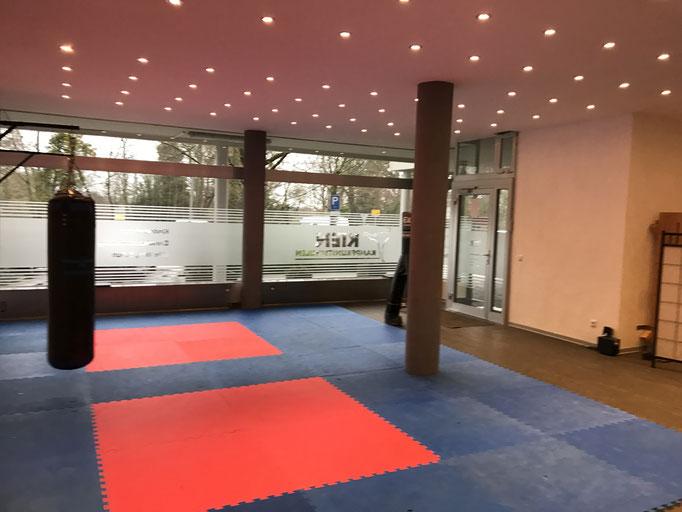 Kampfsport Hemmingen 1