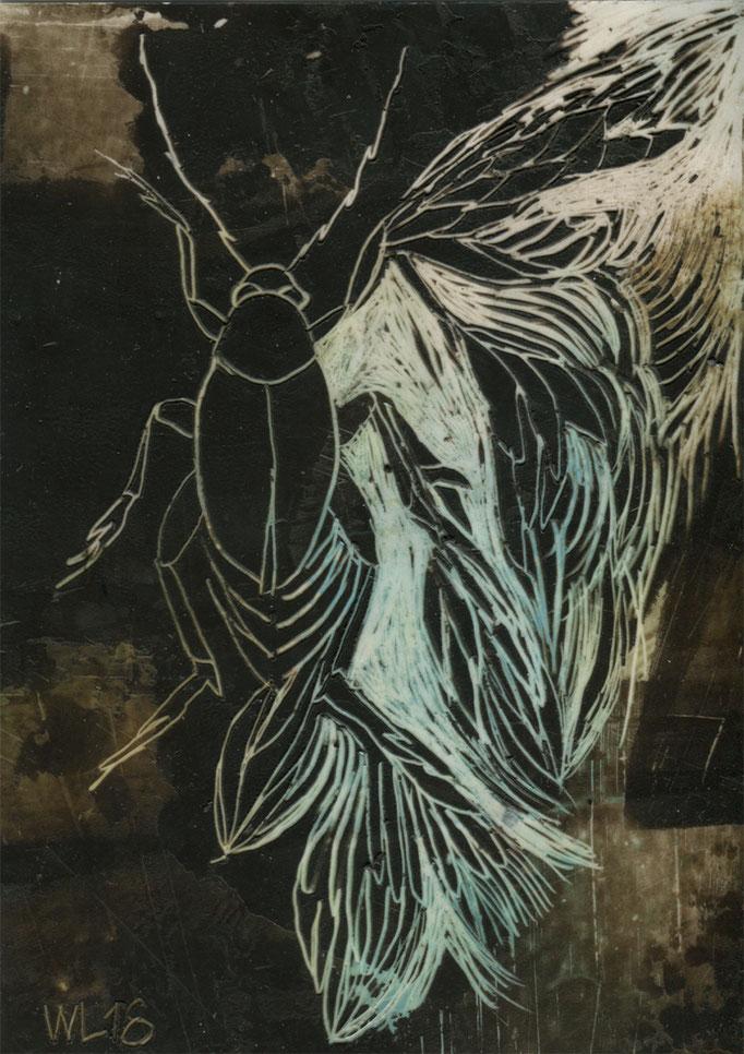 insection 15, 2018, 10 x 14 cm, verschiedene Wachse auf Papier