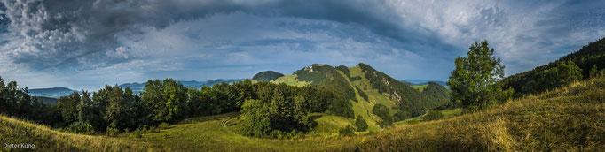 Wasserfallen/ Vogelberg Sommer 2013