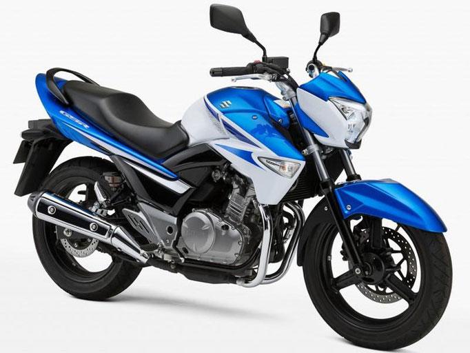 250cc B : SUZUKI GSR250