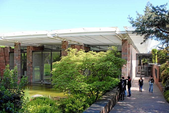 Fondation Beyeler Kunstausstellungen