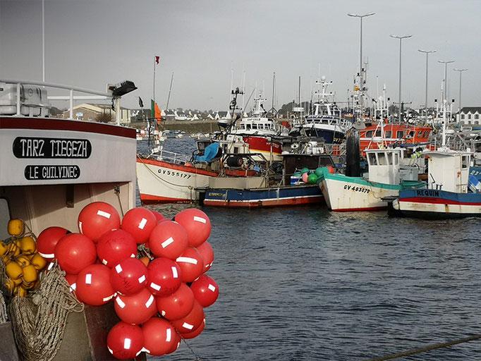 Hafen von Guilvinec