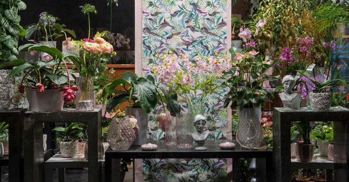 Vitrine de printemps boutique florale Sabrina Maurel