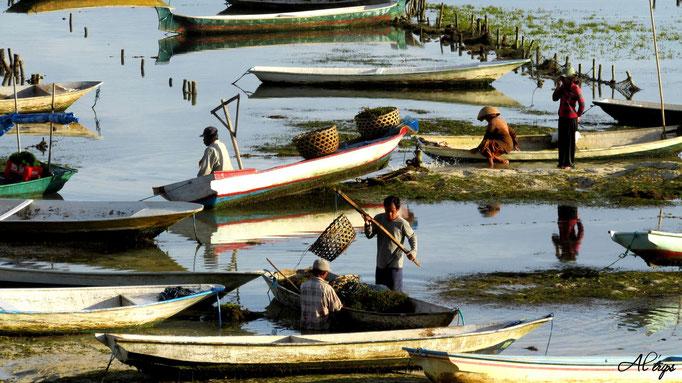Indonésie - Nusa Lembongan