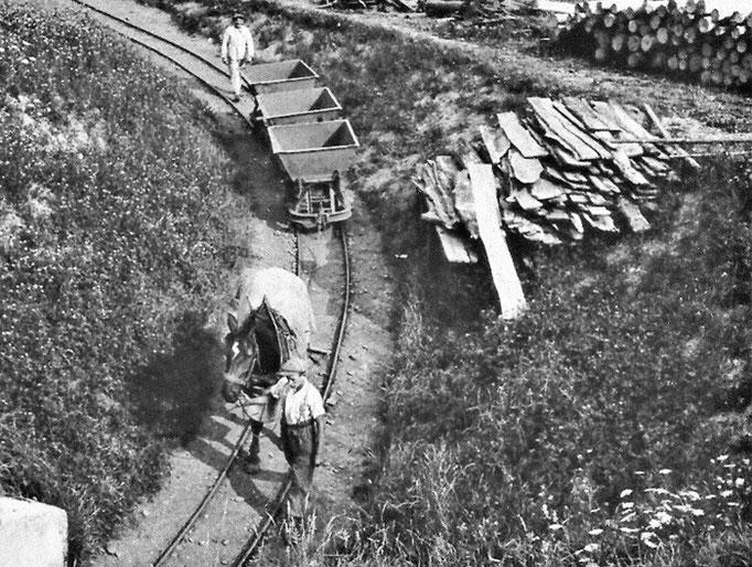 Der Herznacher Landwirt Max Wernli bringt mit seinem Pferd leere Loren in den Hauptstollen zurück.