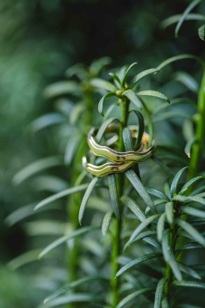 Details Hochzeit NRW Ringe