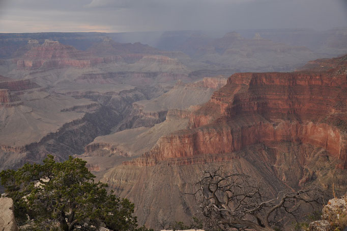 Grand Canyon National Park - panorama